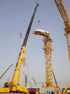 tower crane assembly